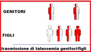 Talassemia-trasmissione genitori figli